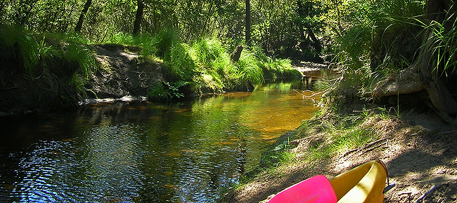 descente_canoe